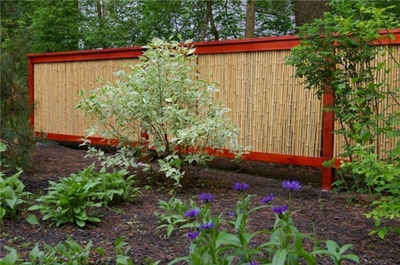 Bamboo Rolled Fencing - Landscaping Network
