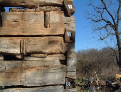 The logs are all numbered ready to move