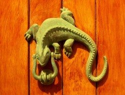 Cast Iron Gecko Door Knocker