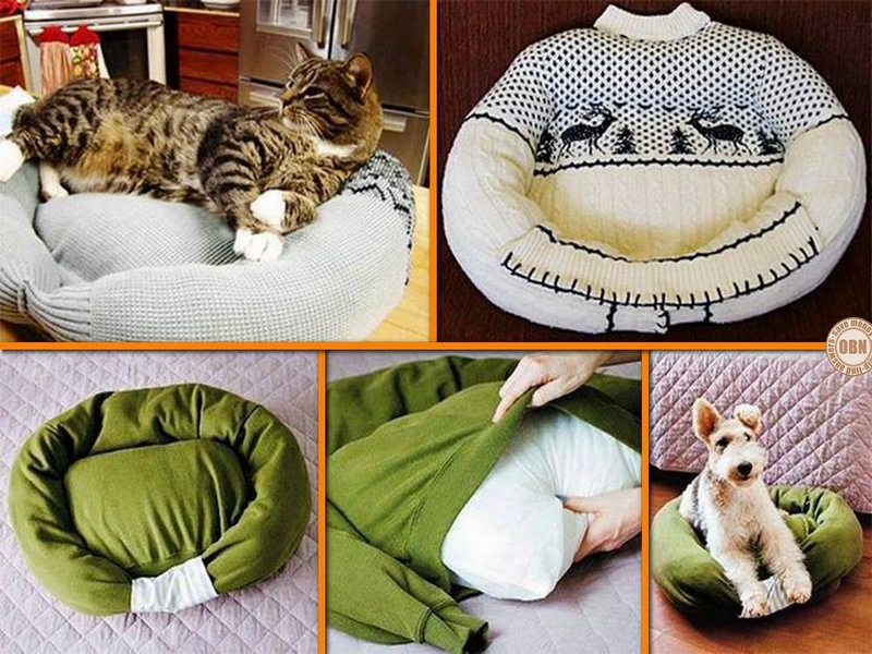 How to turn a sweater into a pet bed