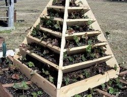 Strawberry Pyramid Planter Examples