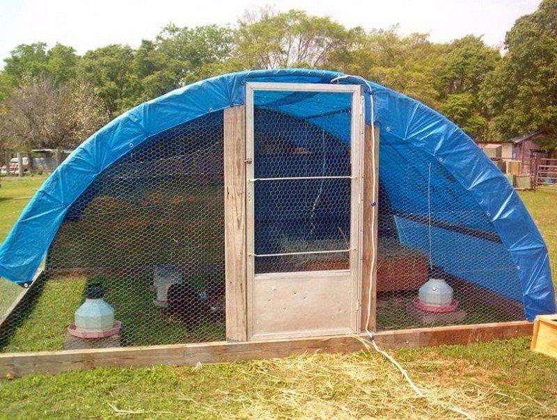 Trampoline Chicken Coop