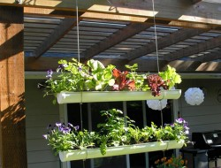 DIY Hanging Gutter Garden