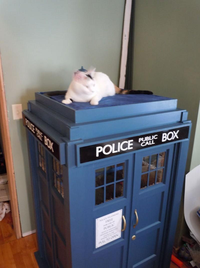 Tardis Cat House Instructions