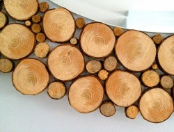 DIY Wood Slice Mirror - Wood Slices
