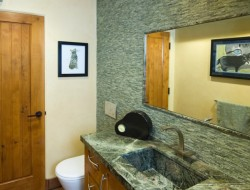 A green oasis for cats - guest bathroom sans cats