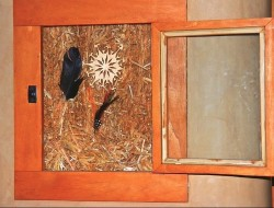 H and H Straw Bale Home - truth window
