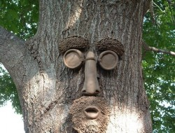 """Put it up on my fence. Turns out with the weathered look to my fence this face blends perfectly. It funny to see people walk by and do a double take. Unlike a lot of other tree faces this one really blends in with the wood, Great conversation piece. Highly recomend this one."""