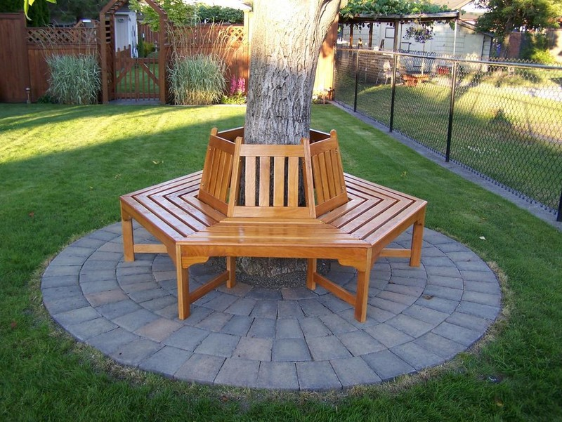 Bench Around a Tree - The Owner-Builder Network