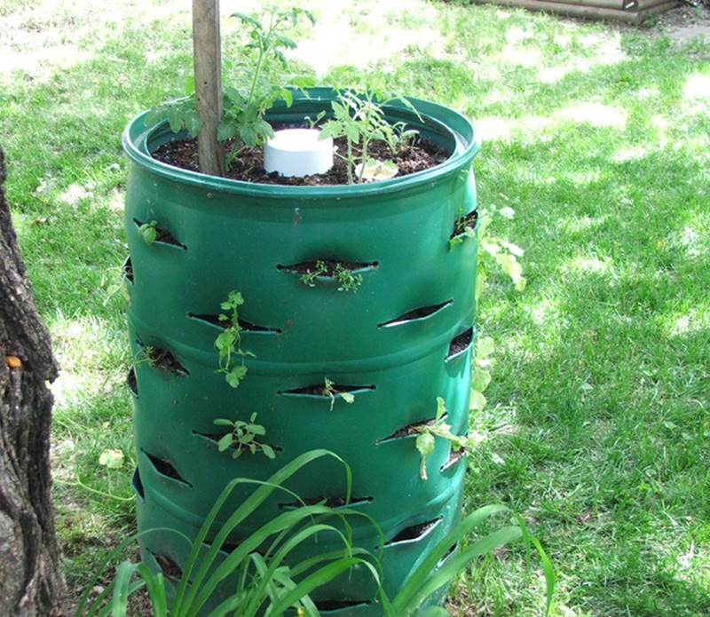 DIY Barrel Planter How To Make Your A Garden