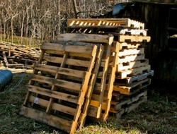 DIY Goat Pallet Barn - Pallets needed