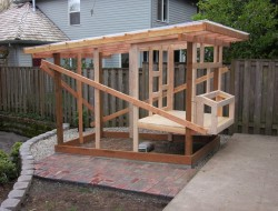Homemade Chicken Coop - Installing the Siding