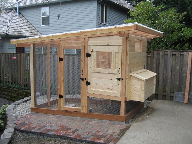 Homemade chicken coop the owner builder network for Easy to build small house plans
