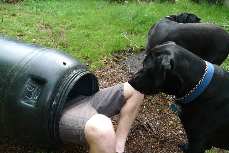Easy To Build Rain Barrel System The Owner Builder Network