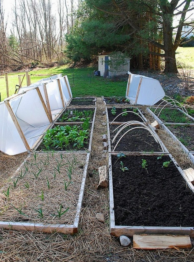 DIY Raised Garden Bed With Cover | The Owner-Builder Network