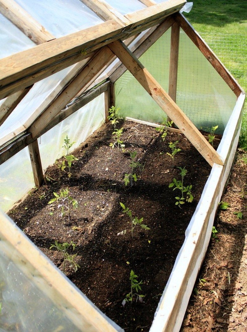 Build a mini greenhouse and extend your growing season ...