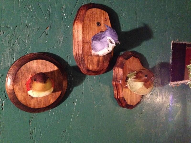 DIY AT AT Cat House - Bird Head Trophies