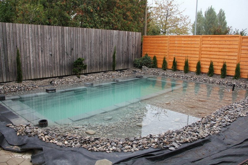 Diy natural swimming pond build the owner builder network for Koi pond natural swimming pool