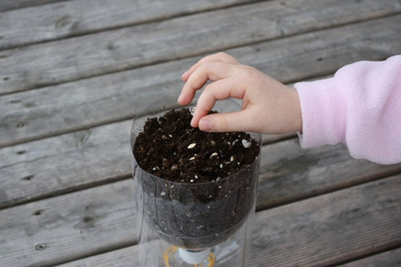 DIY Self-Watering Seed Starter Pots - Add Potting Soil and Seeds