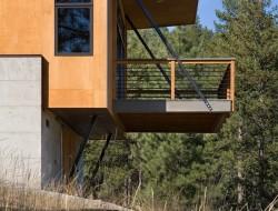 Pine Forest - Deck