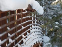 Winter Cabin - Landscape