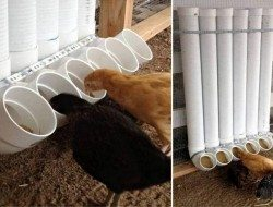 PVC Chicken Feeder - Backyard Chickens