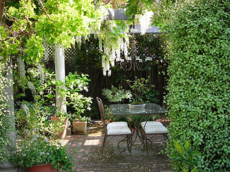 A courtyard with lush vegetation.