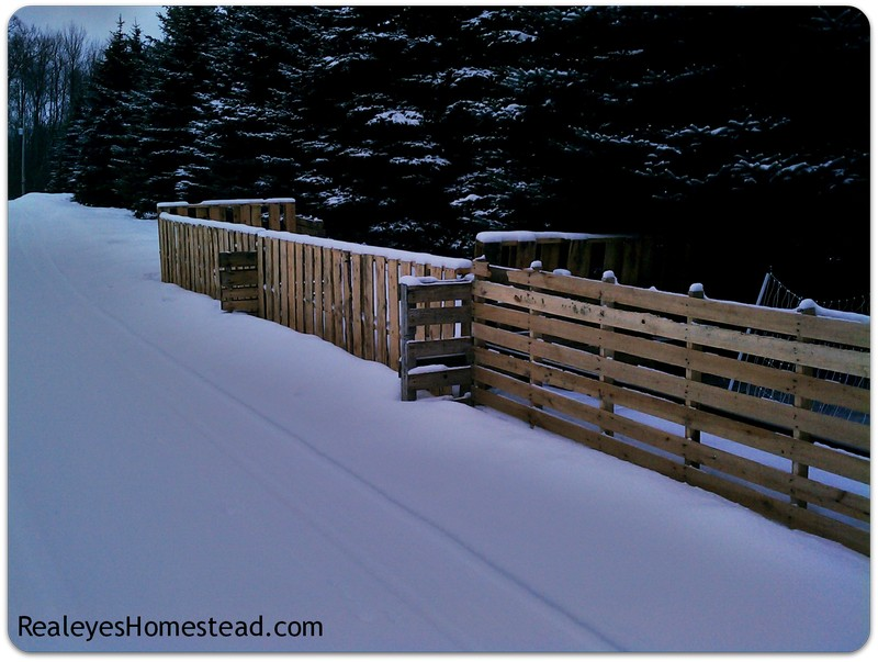 How to Build a Pallet Fence - Realeyes Homestead