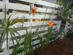 Pallet Fence Flowers DIY - Nicole G