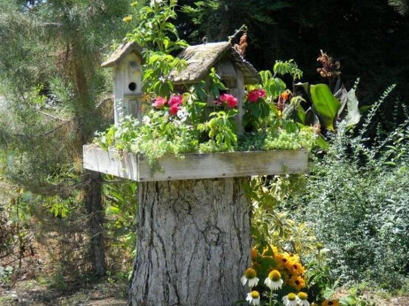 Bird Houses - A Minneapolis Homestead