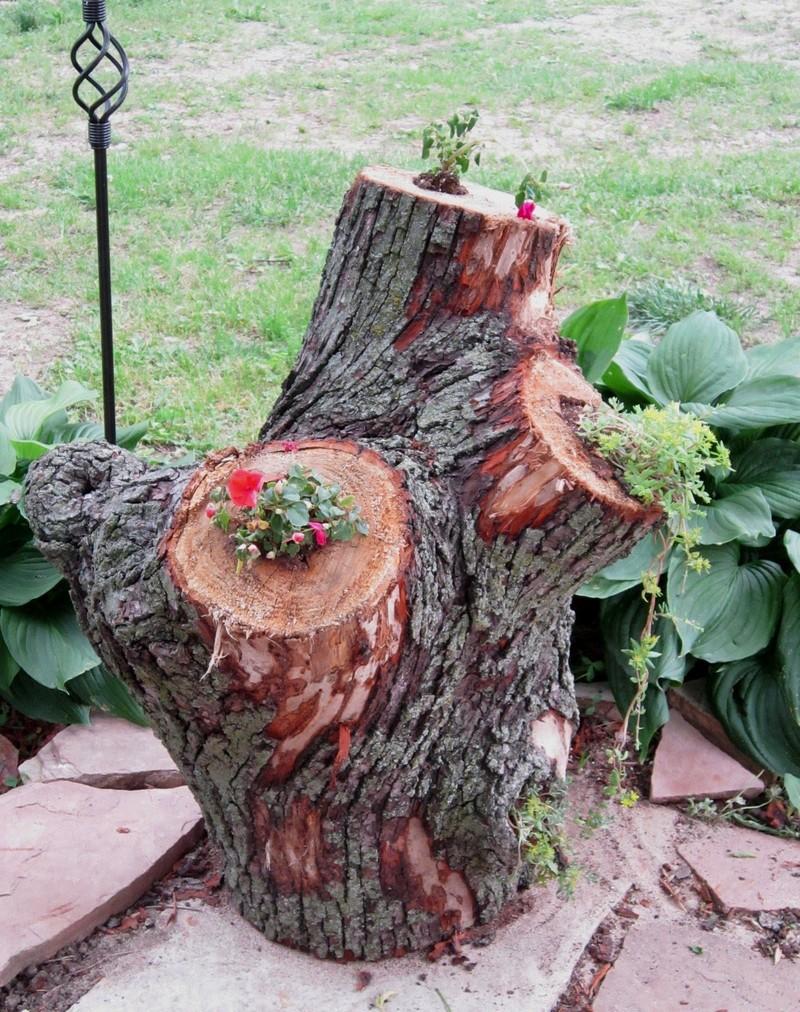 Stump Planter - Tarnished Loyalty