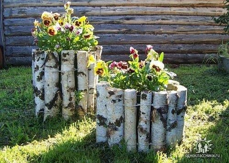 Birch Log Planter Try with driftwood - Live Internet