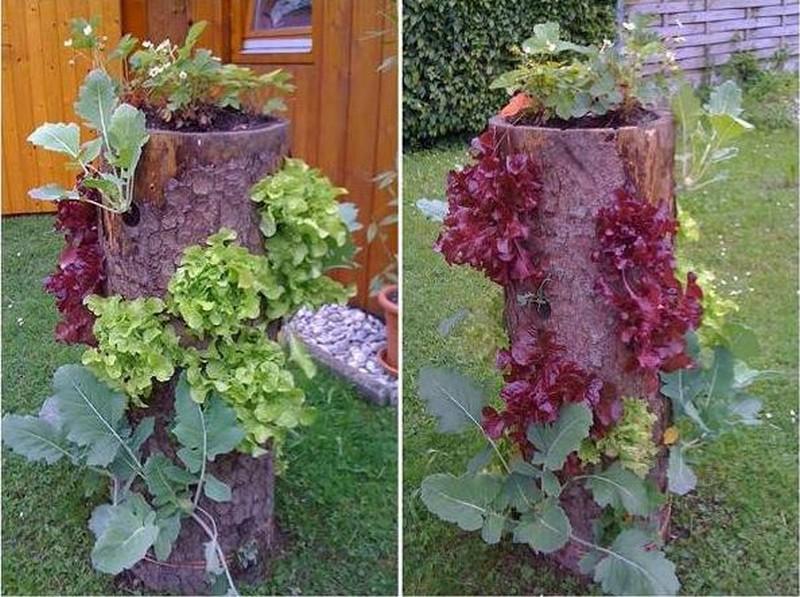 Log Planter - Praktic Ideas