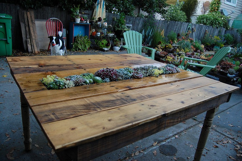 DIY Succulent Table: Recycled Pallets and Table Legs - The Owner-Builder Network