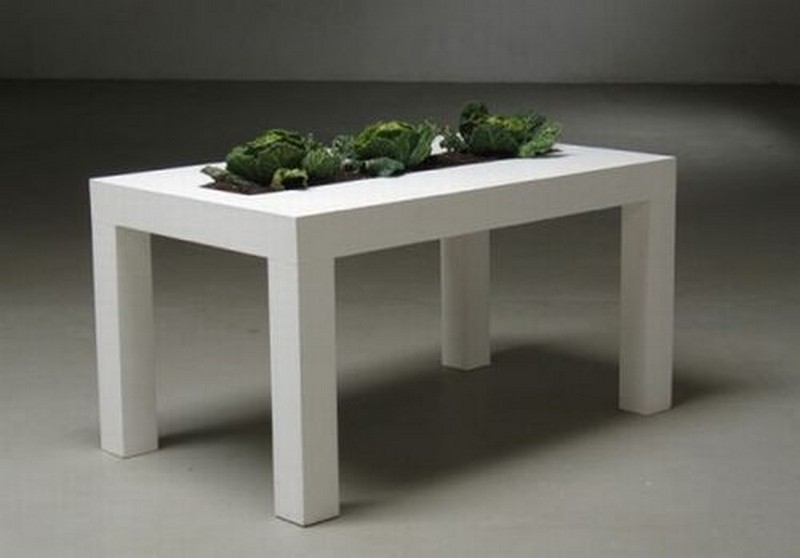 Minimalist Kitchen Table with Built-In Planter - imgfave
