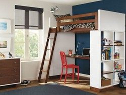 Adult Loft Beds for the Modern Home -decoist