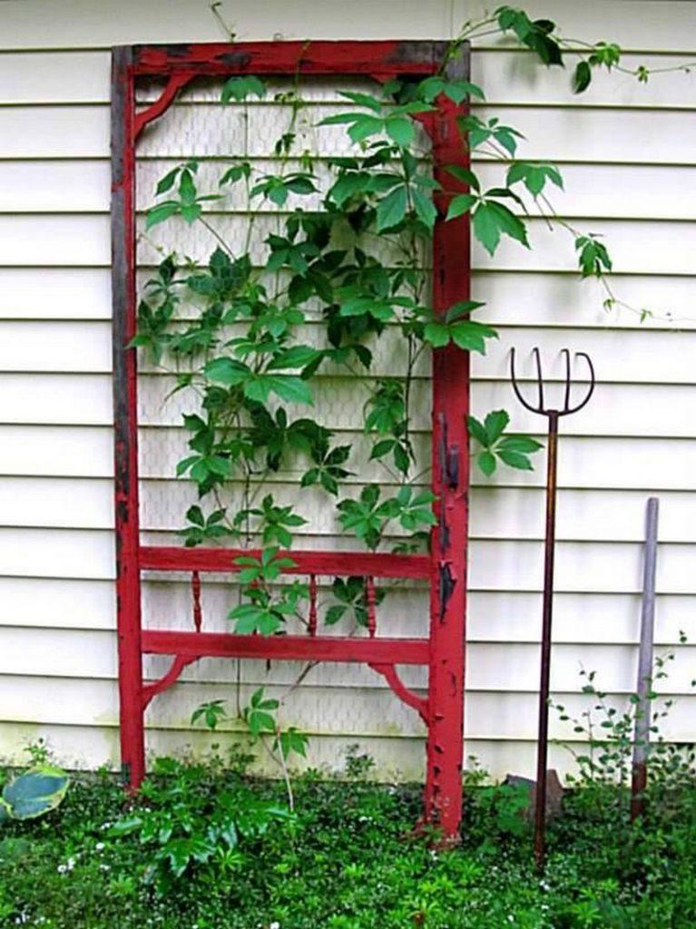 Trellis made from old screen door.