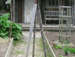 Trellis made from old garden tools.