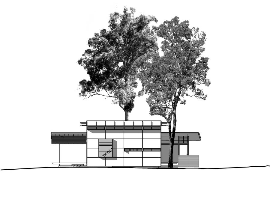 Bark Studio - SW Elevation