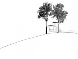 Bark Studio - cross section