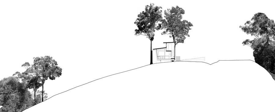 Bark Studio - cross section