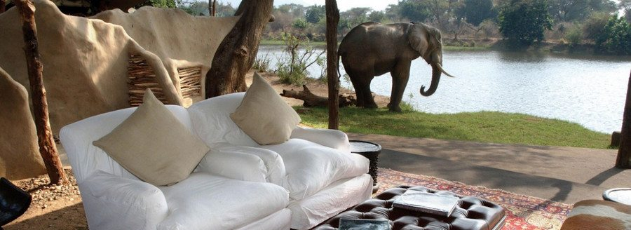 Another neighbour dropping by for afternoon tea at Chongwe River House