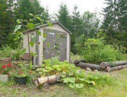 A raised vege garden!