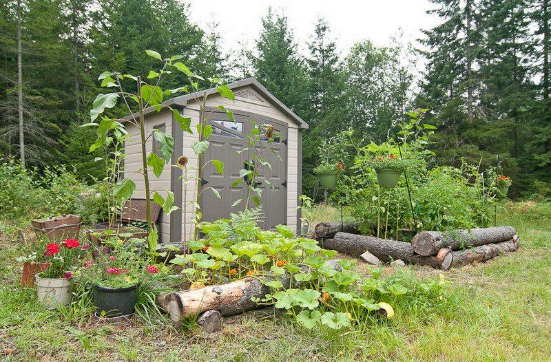 A raised vege garden!
