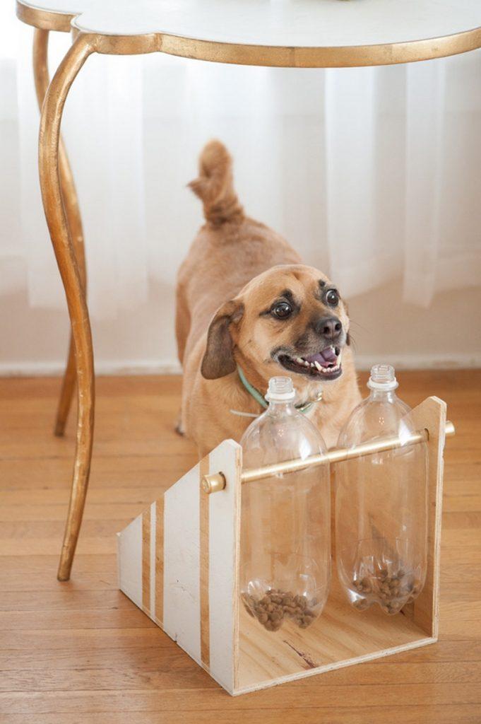 Spinning Plastic Bottle Dog Treat Game