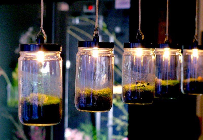 Pendant Terrarium Lamps