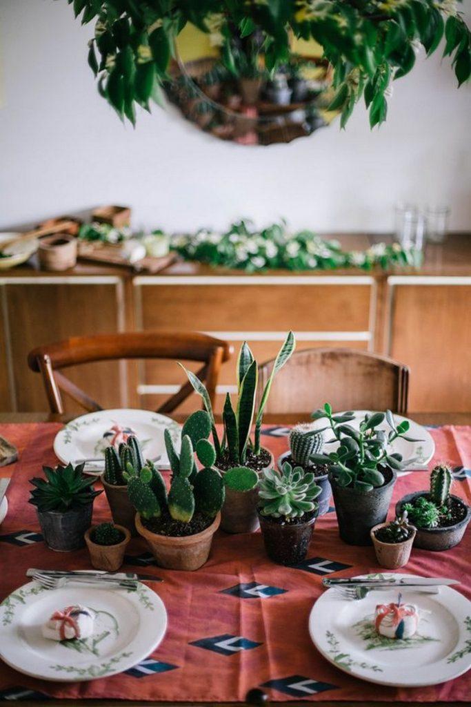 Amazing Ways to Display Indoor Plants