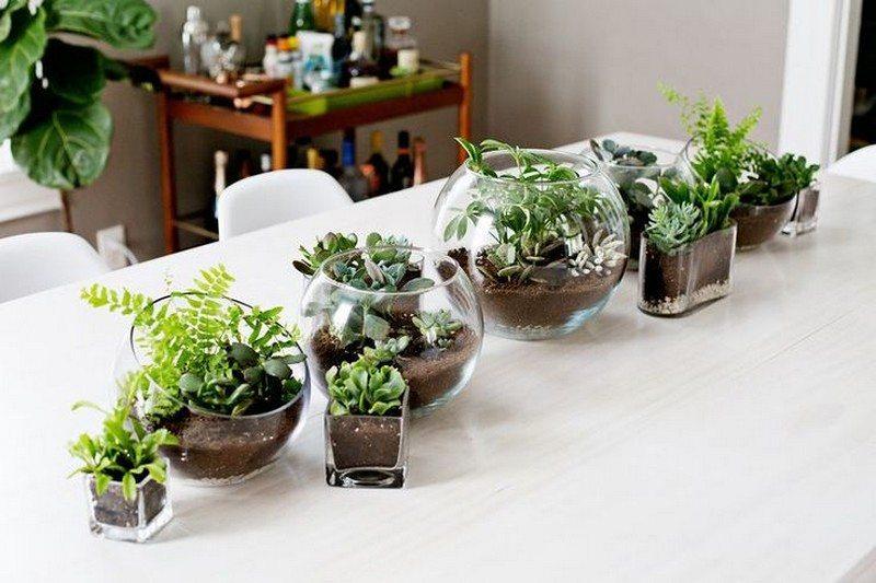 Wonderful Ways To Display Indoor Plants The Owner