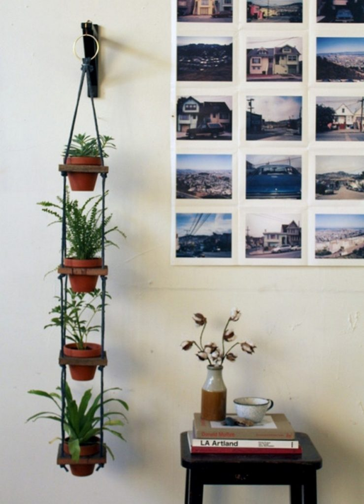 Wonderful Ways to Display Indoor Plants