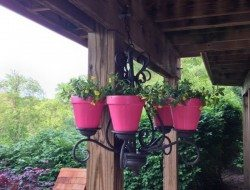 Hanging Planter Chandelier Ideas